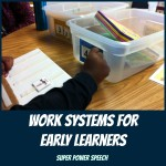 work systems