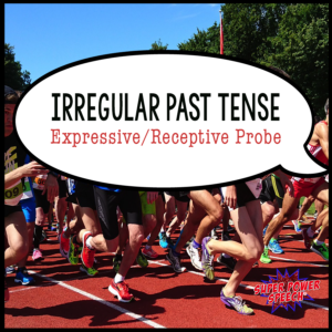 Free irregular past tense probe, just by subscribing!