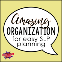 Amazing organization for easy lesson planning